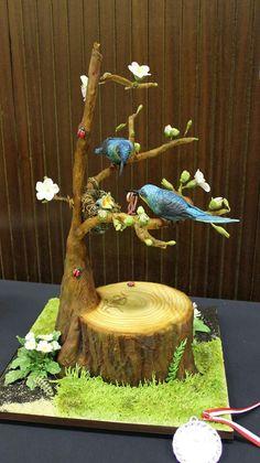 Silber für meine Torte mit den Kolibris bei der cake Cologne