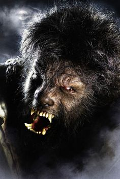 Rick Baker's Make-Up for the 2010 WOLFMAN, very intense !