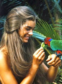 Google Image Result for http://www.montaignemarket.com/blog/wp-content/uploads/2012/06/brookeshields-brookenook.jpg