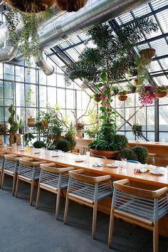 Que as plantas ganharam o interior das casas a gente já sabe e vê cada vez mais por aí. É o que é conhecido por Green Interior ou Urban Jungle. Agora, para espaços comerciais as plantas são uma nov…