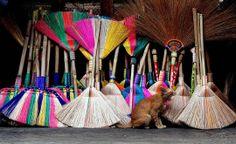 Dumaguete Public Market http://catailments1.blogspot.com/2013/11/cat-from-dumaguete-city-philippines.html