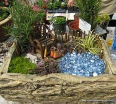 I love the pond fairy Garden. I might have to make this one.