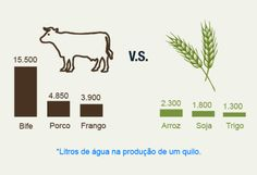 Beef x water