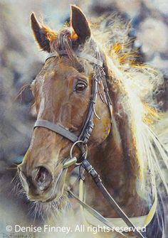 Race horse Gone to Lunch painting by Denise Finney