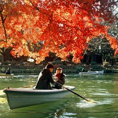 Tokyo's Inokashira Park