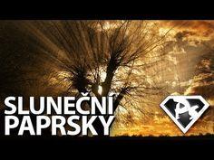 V tomto krátkém videu se naučíte, jak velmi rychle a jednoduše vytvořit sluneční paprsky prosvítající skrz větve stromů | Photoshopové Orgie
