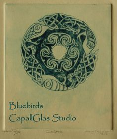 Celtic Bluebirds
