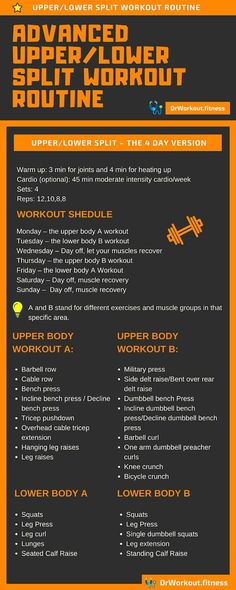Muscle Building 3 Day Split, 4 Day Upper/Lower & 5 Day Split Workout Plans