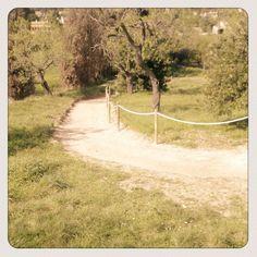 Camino no andado