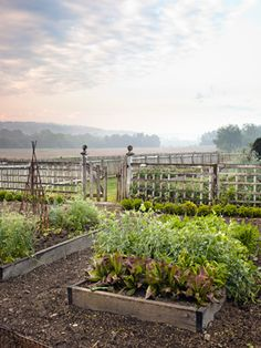 our kitchen garden area is about half this size, but the general layout could work really well