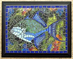 Queen Triggerfish by Anneflickr2008, via Flickr