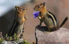 isn't it sweet.....<3<3<3