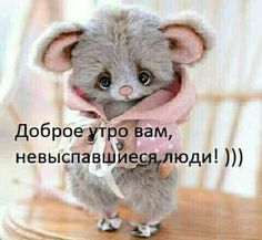 New quotes good morning note ideas New Quotes, Happy Quotes, Funny Quotes, Cute Funny Animals, Funny Cats, Russian Quotes, Funny Expressions, Funny Phrases, Disney Quotes