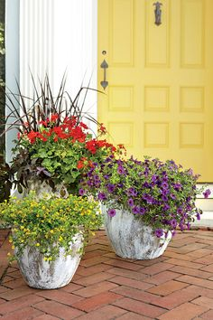 Warm and Cheerful Trio - 122 Container Gardening Ideas - Southernliving. Heat-tolerant geraniums, calibrachoas, and mecardonias in bright red, yellow, and purple shout a welcome in a cheerful way. Diy Garden, Spring Garden, Garden Pots, Garden Ideas, Potted Garden, Potted Plants, Container Gardening Vegetables, Container Plants, Gemüseanbau In Kübeln