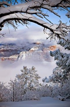 Winter Grand Canyon, Arizona Photographer - Suzanne Mathia