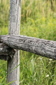 Free stock photo of field, countryside, fence, grassland