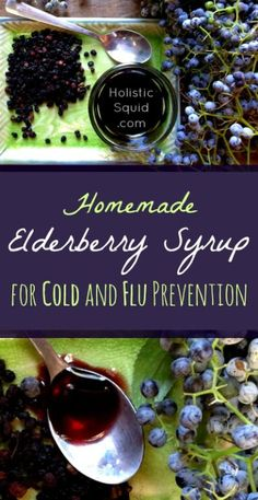 Elderberry Syrup Recipe for Cold and Flu Prevention - Holistic Squid