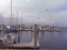 Panama City Beach Florida Marina
