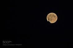moon by JinHoKim5