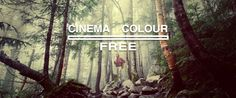 Check out the Rocket Rooster Cinema Colour FREE pack. That's right, here's a 100% FREE looks set to get you started. The pack is really easy to use and offers quick Cinematic looks and useful tools.Please feel free to leave a tip :)Works in:Premiere ProFCPx *with pluginDaVinci ResolveAfter EffectsPh
