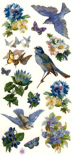 Bluebird stickers for crafting and card making, made in the USA