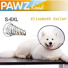 Pet-Dog-Cat-Adjustable-Elizabeth-Collar-Anti-Bite-Ring-Wound-Healing-Protector Pet Dogs, Dog Cat, Pets, Dog Grooming Clippers, Wound Healing, Cat Collars, Your Pet, Ring, Animals And Pets