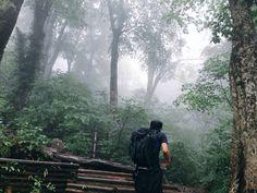 大雨で深い霧のなか…
