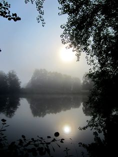 #Sun, #water and #fog on trail run in #Germany. More http://trampelpfad.net