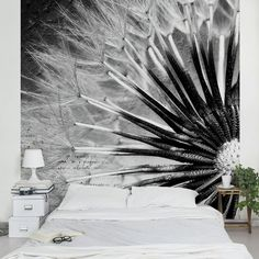 Bilderwelten Vliestapete Blumen Quadrat »Pusteblume Schwarz & Weiß« ab 39,95€. Material: extrem dimensionsstabile 110 g/qm Vliestapete bei OTTO