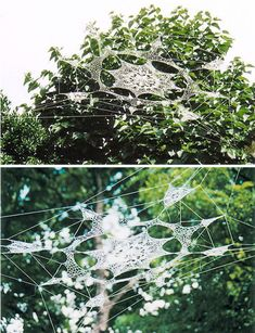 """a world wide web"" and ""the 26,000″ installations by shane walter."