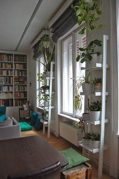 Zsófi lakása 9. rész: A nappali és a hall | Kicsi Ház Halle, Houseplants, Terrace, Bookcase, Creations, Loft, Shelves, Flooring, Living Room