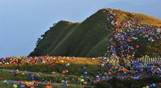 15,000 campers pitch their tents on Chinese hillside - PhotoBlog
