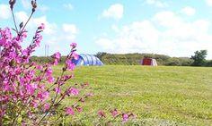 Granary Barn campsit