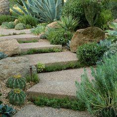 Arizona garden path