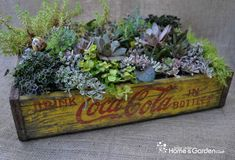 Ideas para jardineras de estilo vintage