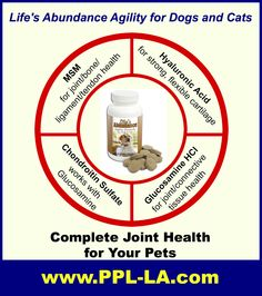 This Agility joint supplement works WONDERS for our greyhound Logan who had a broken leg and two subsequent surgeries! www.PPL-LA.com