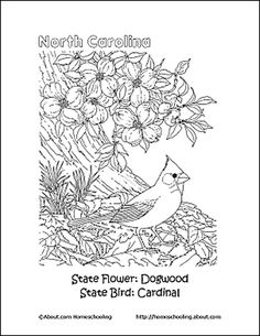 nc state wolfpack coloring pages coloring pages happy nc day 11211789 pinterest