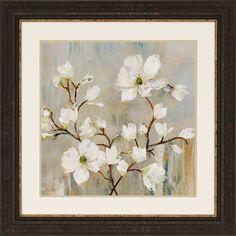 Paragon - Sweetbay Magnolia II