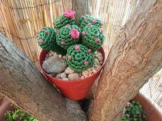 Tutorial crochet/ganchillo cactus dedo parte 1 - YouTube