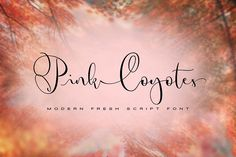 Pink Coyotes by individuel on @creativemarket