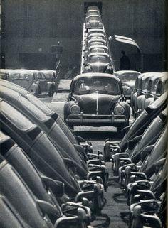 Beetles vw factory line