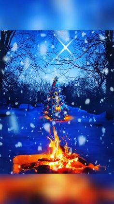 Snowy Christmas Scene 🎵 Blue Christmas by — Artificial fir tree as Christmas decoration? An artificial Christmas Tree or perhaps a real one? Snowy Christmas Scene, Animated Christmas Tree, Christmas Scenery, Peanuts Christmas, Winter Scenery, Noel Christmas, Christmas Candles, Christmas Music, Christmas Tree Toppers