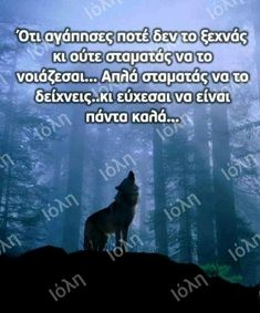 Greek Quotes, So True, Psychology, Wolf, Feelings, Photography, Psicologia, Photograph, Fotografie
