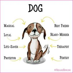 dog lovers -> Avoid trying to force things that your puppy. Should your dog doesn't like a particular treat, let it sit alone. Learn about your dog's various likes and what he doesn't. I Love Dogs, Puppy Love, Pet Dogs, Dogs And Puppies, Doggies, Corgi Puppies, Weiner Dogs, Crazy Dog Lady, Dog Rules