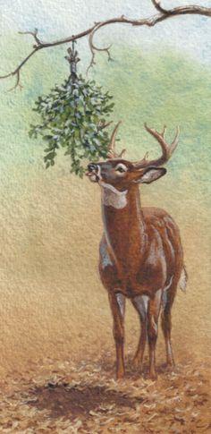 Nock & Load: Early Season Whitetail Strategies | Outdoor Life