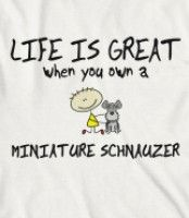 Life is great when you own a Miniature Schnauzer!