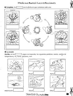 Science For Kids, Earth Science, Science Activities, Science And Nature, 2nd Grade Worksheets, School Worksheets, Science Classroom, Social Science, Science Display