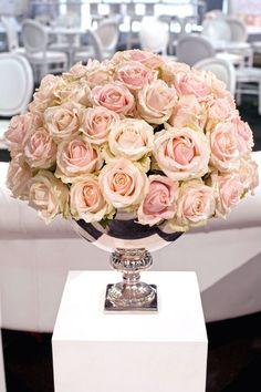 blush/cream/champagne colored Sahara roses