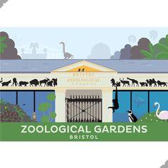 Bristol Zoo Print – Andy Tuohy Design