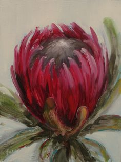 A gallery of daily painting by Heidi Shedlock Protea Art, Protea Flower, Watercolor Flowers, Watercolor Art, Australian Native Flowers, Watercolor Projects, Cafe Art, Floral Drawing, Plant Illustration